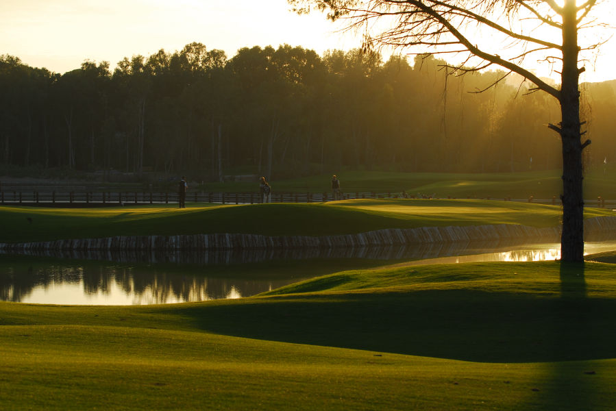 Sueno Pines Golf