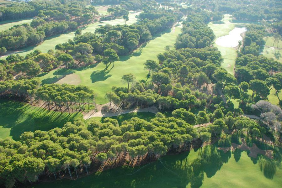 Sueno Pines Golf- Luftbild