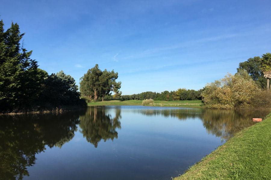 Pestana Beloura Golf