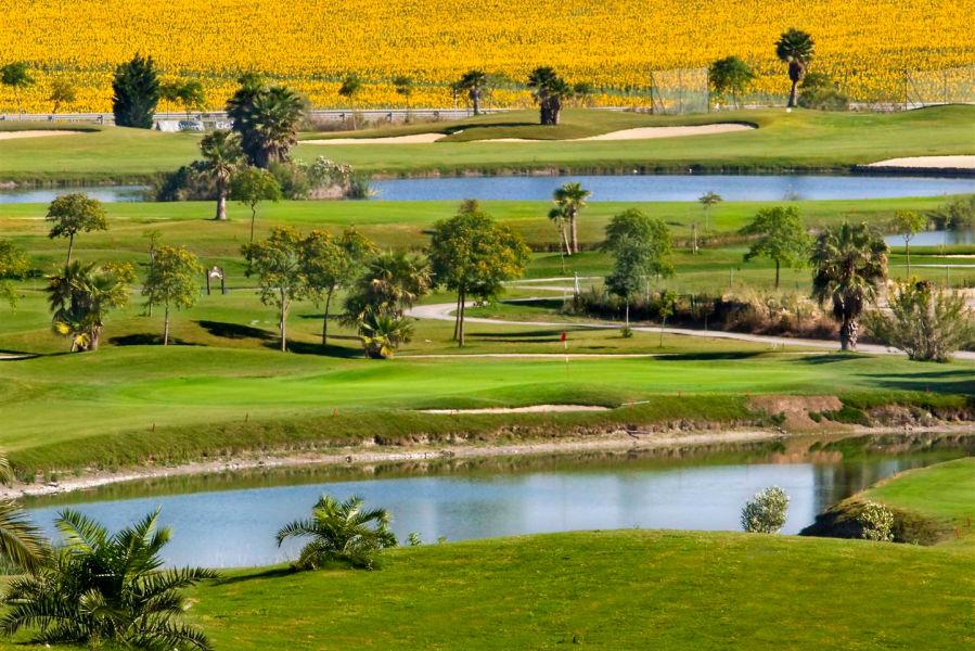 Sherry Golf Jerez. Der abwechslungsreiche und sehr interessante 18-Lochplatz mit breiten Fairways und großen Grüns liegt am Rande der Stadt Jerez und gilt als sportlich anspruchsvoll.